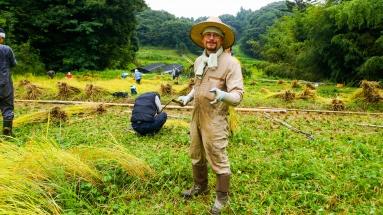 2017-09-02 Rice Harvesting DSC01340
