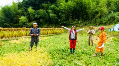 2017-09-02 Rice Harvesting DSC01357