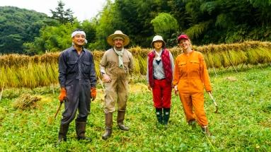 2017-09-02 Rice Harvesting DSC01360