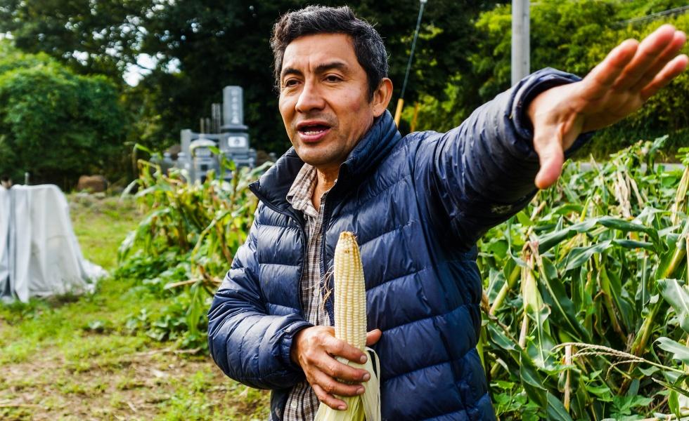 Hackerfarm Autumn Corn Harvest